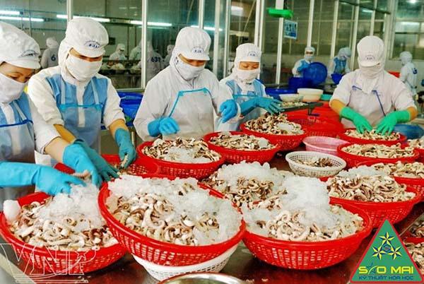 Hóa chất công nghiệp ngành thủy sản | Nơi cung cấp hóa chất công nghiệp thủy sản uy tín nhất